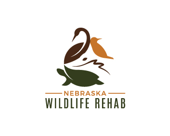 Logo design for Nebraska Wildlife Rehab