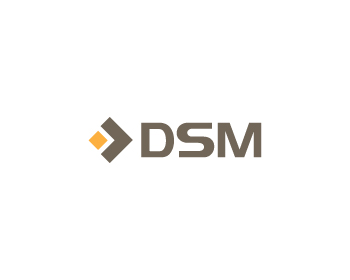 DSM Real Estate logo design