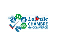 Logo design entry number 148 by retrometro steve chambre for Chambre commerce canada