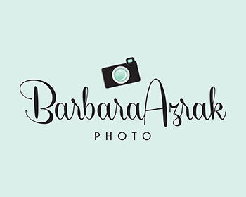 Logo Design #20 by vibrantimagery