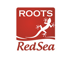Roots Red Sea logo