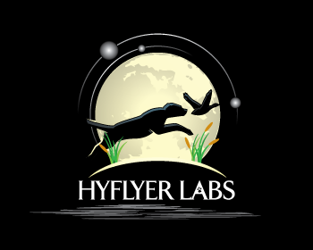 Hyflyer Labs logo design