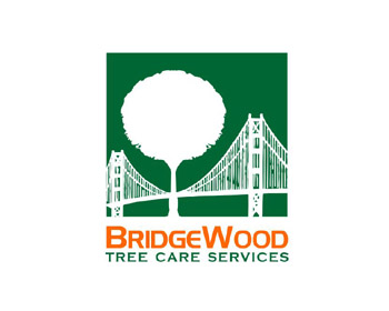 BridgeWood Tree Care Services logo design