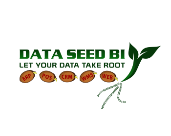 Data Seed Business Intelligence logo design
