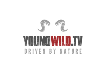 Youngwild.tv logo design