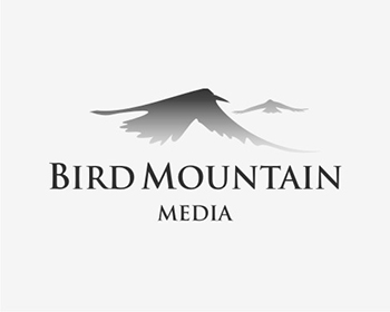 Bird Mountain Media logo design
