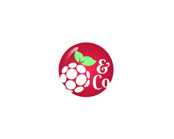 Logo design for Raspberry & Co