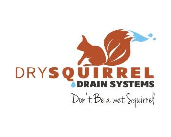 Dry Squirrel Drain Systems logo design
