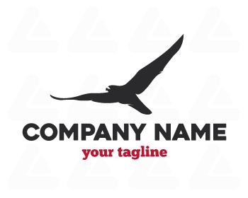 Logo design: hawk